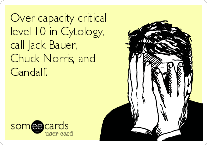 Over capacity critical level 10 in Cytology, call Jack Bauer, Chuck Norris, and Gandalf.