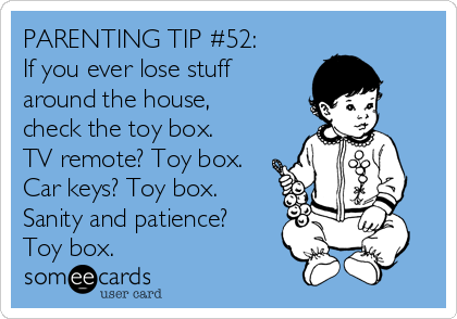 PARENTING TIP #52: If you ever lose stuff around the house, check the toy box. TV remote? Toy box. Car keys? Toy box.  Sanity and patience? Toy box.