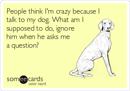 People think I'm crazy because I talk to my dog. What am I supposed to do, ignore him when he asks me a question?