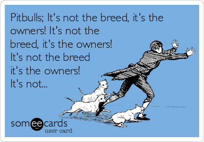 Pitbulls; It's not the breed, it's the owners! It's not the breed, it's the owners! It's not the breed it's the owners! It's not...
