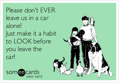 Please don't EVER leave us in a car alone! Just make it a habit to LOOK before you leave the car!
