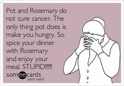 Pot and Rosemary do not cure cancer. The only thing pot does is make you hungry. So spice your dinner with Rosemary and enjoy your meal. STUPID!!!!!!