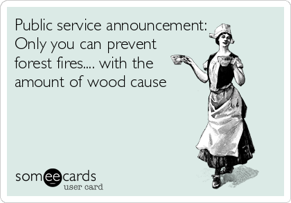 Public service announcement: Only you can prevent forest fires.... with the amount of wood cause