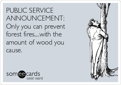 PUBLIC SERVICE ANNOUNCEMENT: Only you can prevent forest fires....with the amount of wood you cause.