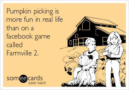 Pumpkin picking is more fun in real life than on a facebook game called Farmville 2.