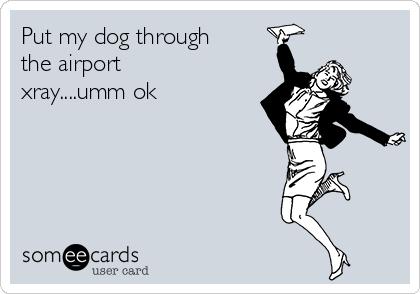 Put my dog through the airport xray....umm ok