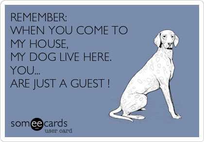 REMEMBER:                     WHEN YOU COME TO MY HOUSE,  MY DOG LIVE HERE. YOU... ARE JUST A GUEST !