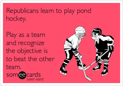 Republicans learn to play pond hockey.  Play as a team and recognize the objective is to beat the other team.