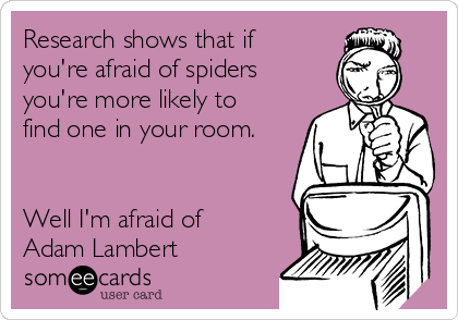 Research shows that if you're afraid of spiders you're more likely to find one in your room.   Well I'm afraid of Adam Lambert