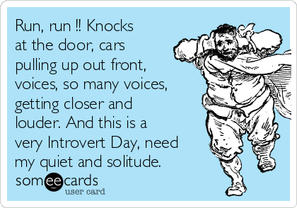 Run, run !! Knocks at the door, cars pulling up out front, voices, so many voices, getting closer and louder. And this is a very Introvert Day, need my quiet and solitude.