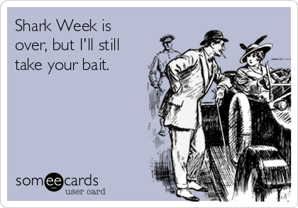 Shark Week is over, but I'll still take your bait.