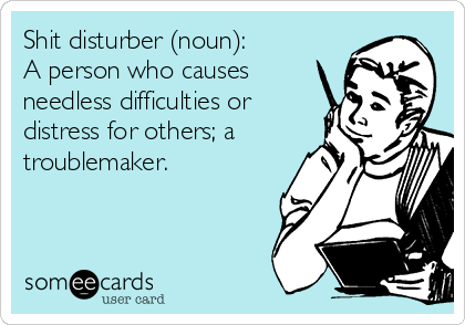 Shit disturber (noun): A person who causes  needless difficulties or distress for others; a troublemaker.