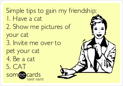 Simple tips to gain my friendship: 1. Have a cat 2. Show me pictures of your cat 3. Invite me over to pet your cat 4. Be a cat 5. CAT