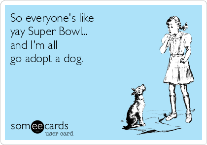 So everyone's like yay Super Bowl... and I'm all go adopt a dog.