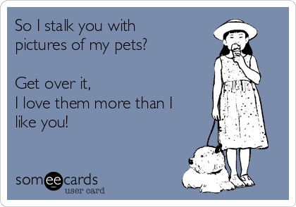 So I stalk you with pictures of my pets?  Get over it, I love them more than I like you!