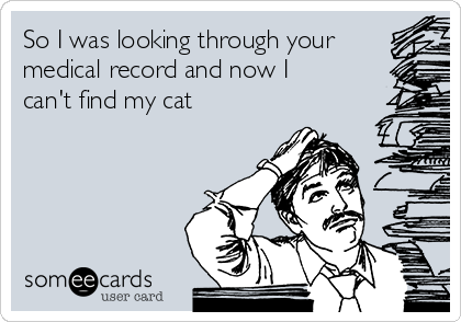 So I was looking through your medical record and now I can't find my cat