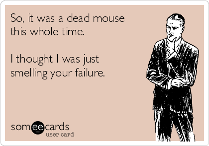 So, it was a dead mouse this whole time.  I thought I was just smelling your failure.