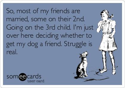 So, most of my friends are married, some on their 2nd. Going on the 3rd child. I'm just over here deciding whether to get my dog a friend. Struggle is real.