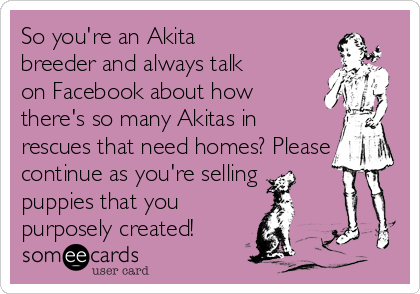 So you're an Akita breeder and always talk on Facebook about how  there's so many Akitas in rescues that need homes? Please continue as you're selling puppies that you purposely created!