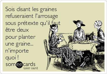 Sois disant les graines refuseraient l'arrosage sous prétexte qu'il faut être deux pour planter une graine... n'importe quoi !