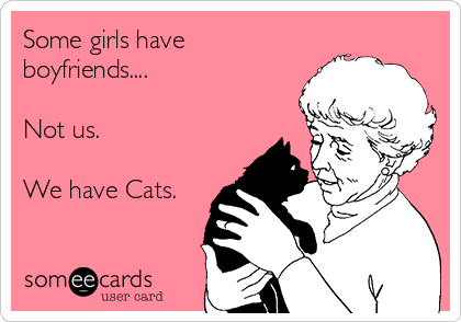 Some girls have boyfriends....  Not us.  We have Cats.