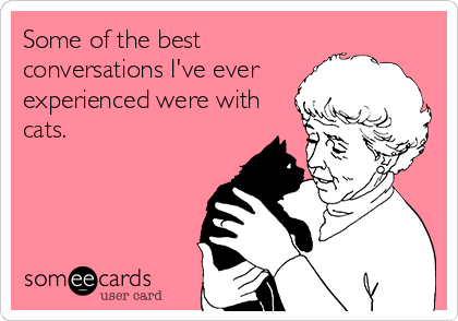 Some of the best conversations I've ever experienced were with cats.