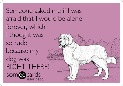 Someone asked me if I was afraid that I would be alone forever, which I thought was so rude because my dog was RIGHT THERE!