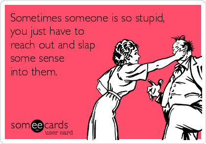 Sometimes someone is so stupid, you just have to reach out and slap some sense into them.