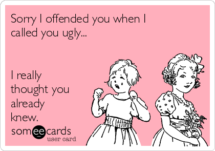 Sorry I offended you when I called you ugly...   I really thought you already knew.
