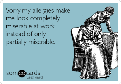 Sorry my allergies make me look completely miserable at work instead of only partially miserable.