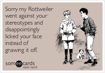 Sorry my Rottweiler  went against your stereotypes and  disappointingly licked your face instead of gnawing it off.