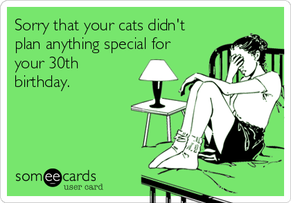 Sorry that your cats didn't plan anything special for your 30th birthday.
