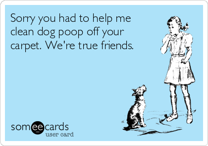Sorry you had to help me clean dog poop off your carpet. We're true friends.