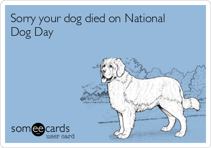 Sorry your dog died on National Dog Day