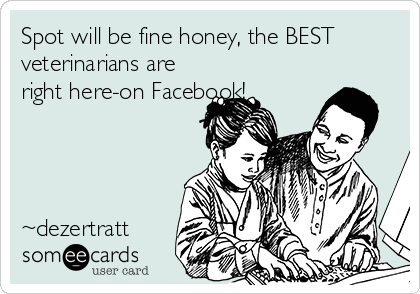 Spot will be fine honey, the BEST veterinarians are right here-on Facebook!     ~dezertratt