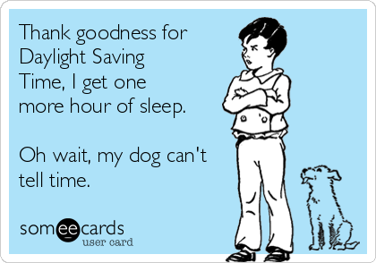 Thank goodness for  Daylight Saving Time, I get one more hour of sleep.  Oh wait, my dog can't tell time.