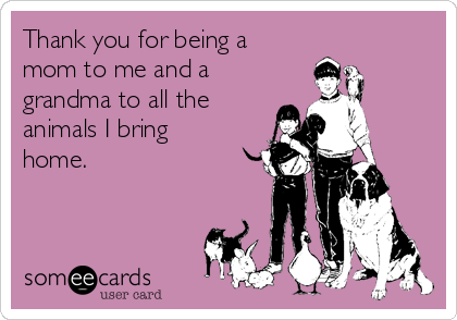 Thank you for being a mom to me and a grandma to all the animals I bring home.