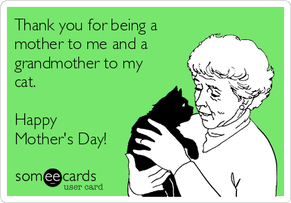 Thank you for being a mother to me and a grandmother to my cat.  Happy Mother's Day!