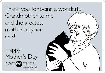 Thank you for being a wonderful Grandmother to me and the greatest mother to your cats!  Happy Mother's Day!