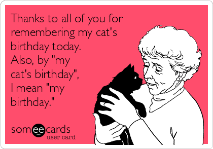 Thanks To All Of You For Remembering My Cats Birthday Today Also By