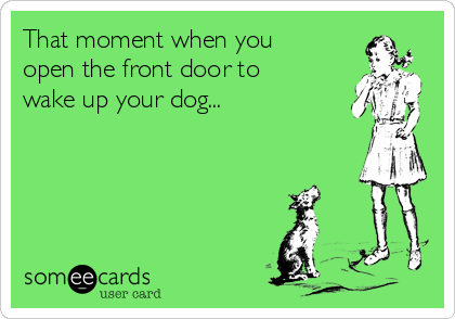 That moment when you open the front door to wake up your dog...