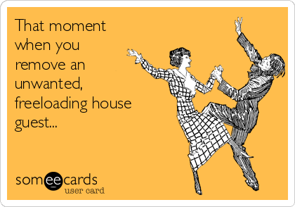 That moment when you remove an unwanted, freeloading house guest...