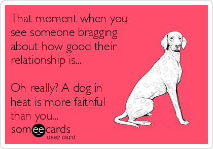 That moment when you see someone bragging about how good their relationship is...  Oh really? A dog in heat is more faithful than you...