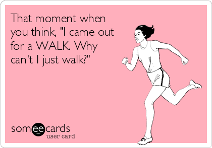 """That moment when you think, """"I came out for a WALK. Why can't I just walk?"""""""