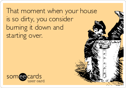 That moment when your house is so dirty, you consider burning it down and starting over.