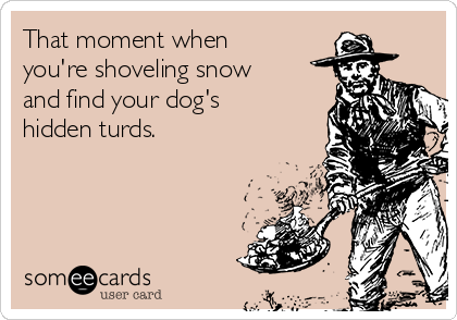 That moment when you're shoveling snow and find your dog's hidden turds.