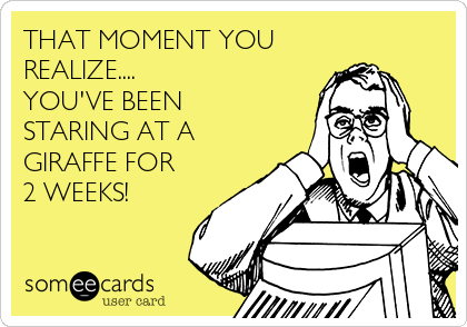 THAT MOMENT YOU REALIZE.... YOU'VE BEEN STARING AT A GIRAFFE FOR 2 WEEKS!