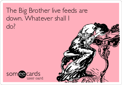 The Big Brother live feeds are down. Whatever shall I do?