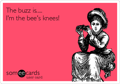 The buzz is..... I'm the bee's knees!