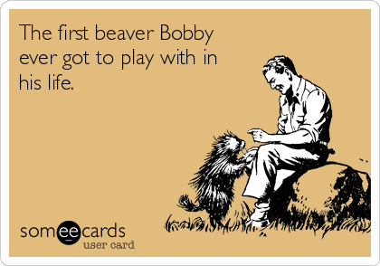 The first beaver Bobby  ever got to play with in his life.